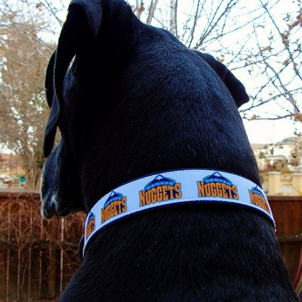 nuggetsdog.jpg